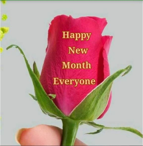 HAPPY NEW MONTH MESSAGE FROM SOLUTIONMEDIAZ CREW