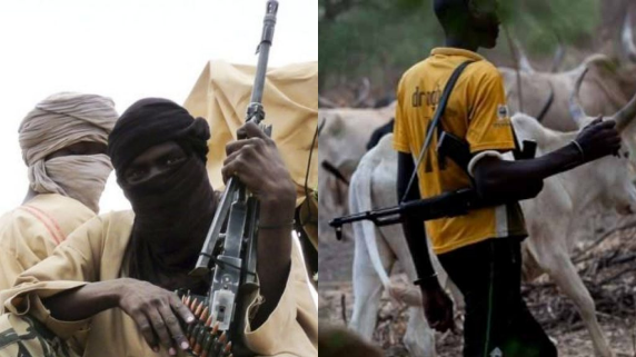 Banditry, herdsmen crisis: How Nigeria is walking another dangerous road to abyss